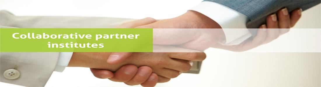 Collaborative partner institutes-pic0